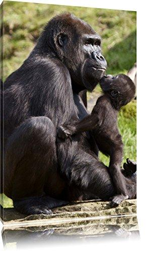 Gorilla baby kissing his mother as Canvas, XXL Pictures completely framed with large wedge frames, art print on wall picture with frame, cheaper than painting or an oil painting, not a poster or banner size: 120x80 cm