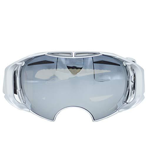 Igspfbjn Snowboarding goggles dual lens anti-mist anti-wind UV400 glasses youth - skiing, snowboarding, motorcycle riding (Color : 01)