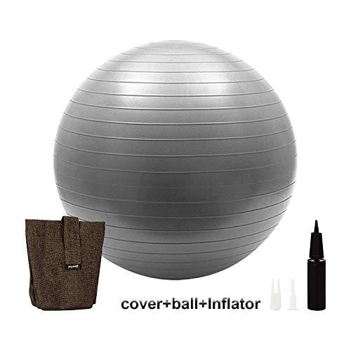 Joywell Exercise Ball with Multifunctional Cover Included Pump, Yoga Fitness Stability Base, Sitting Ball Chair for Office Home Indoor Outdoor (75CM, Chocolate)