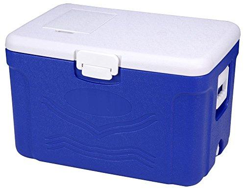 JXS High-Performance Cooler Box, Beverage Refrigerator, Camping Picnic, Refrigerator Can Accommodate 50L(Eps)