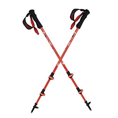 "MOUNTAIN YOYO ""SPIDER"" Flip Lock Light Weight (100% Carbon Fiber 168g, 5.4oz) Walking Poles Trekking Poles Walking Stick Telescoping Adjustable Men Women MYYSPIDERRE2"