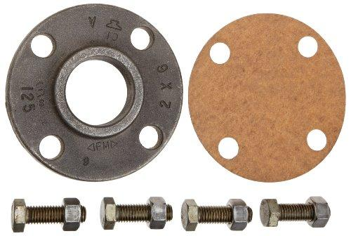 Pentair B60120 2-Inch Companion Flange Kit with Screw and Nut Replacement, Berkeley Type B-Series Electric Motor Drive Single Stage Centrifugal Pump