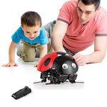 Profun RC DIY Ladybug Robot Toy Remote Control Insect Toy Imitate Insect Movement (Red)