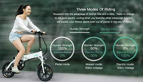 Ruier-hui FIIDO D1 Electric Bikes Bicycle For Adults - 250W,Foldable,Speed Up To 25KM/H With 60-80KM Long-Range Battery perfect choice appealing carefully