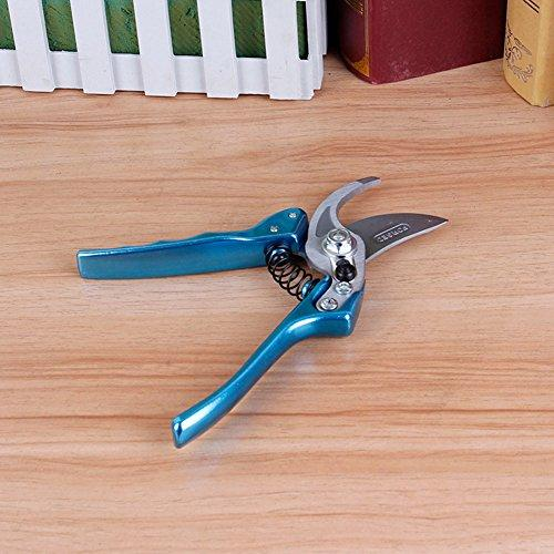SCISSORS Pruning Shears Shears Bypass Branch Shears Fruit Tree Cut Pruning Shears Flower Shears Best For Trees Plants Hedges