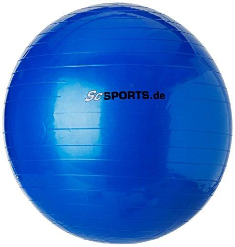 ScSPORTS 1220036 Fitness-Set with Gymnastics Ball, Massage Balls, Fitness Straps, Skipping Rope Blue