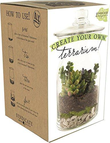 Syndicate Sales DIY Terrarium Kit