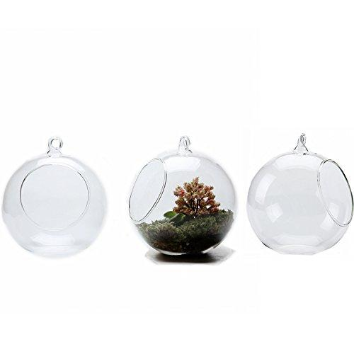 T4U 13.5CM Glass Hanging Plant Terrariums Flower Air Plant Pot Container Home Office Wedding Decoration Votive Holder Sucuulent Cactus Plant Pots Set of 3