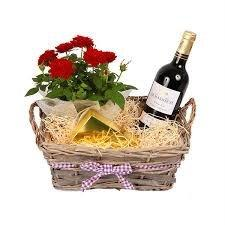 The Gift Box Fresh Rose plant delivered in a deluxe basket red wine bordeaux Chocolates - UK Mainland only