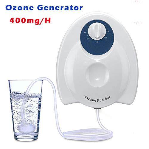 Water Purifier Disinfector Ozone Purifier O3 Generator 8W 400mg/H Eliminate  Odor Smell Remover Sterilizer for Home Food Vegetables Fruits (AC220V EU