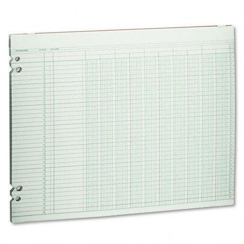 Wilson Jones Accounting Sheets, 10 Columns, 11 x 14, 100 Loose Sheets/Pack, Green by Wilson Jones