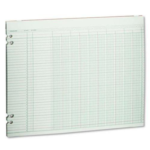 Wilson Jones Green Columnar Ruled Ledger Paper, 10 Columns and 36 Lines per Page, 11 x 14 Inches, 100 Sheets per Pack (WG30-10A) by Wilson Jones