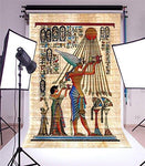YongFoto 2.5x3m Photography Backdrop Wall Painting Tomb Ancient Egyptian Gods and Hieroglyphs Carving Art Historic Photo Background Backdrops Photography Video Party Wedding Photo Studio Props