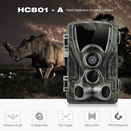 YTIANG Wildlife Camera 16MP 1080P HD Trail Camera with 120°Wide Angle 65ft Detection Range Infrared Night Vision Motion Activated Camera IP56 Spray Waterproof for Nature