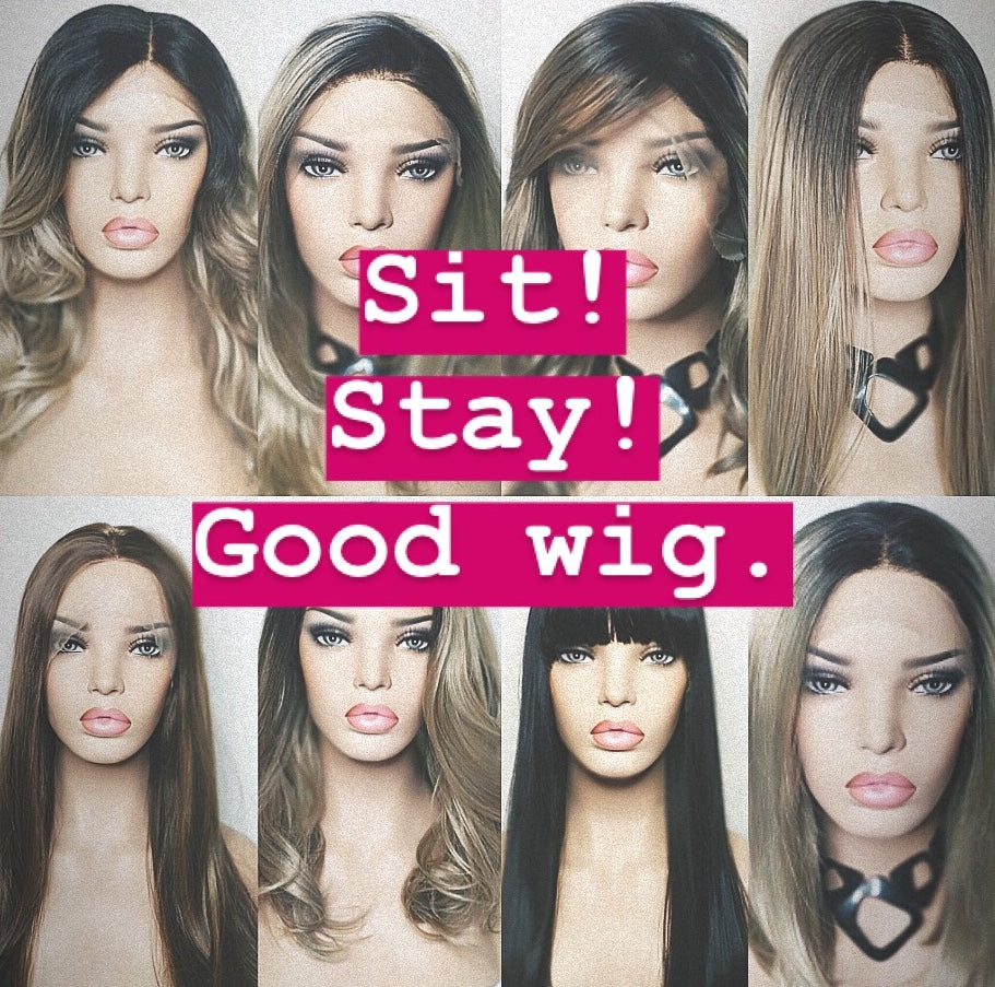 Sit. Stay. Good wig.
