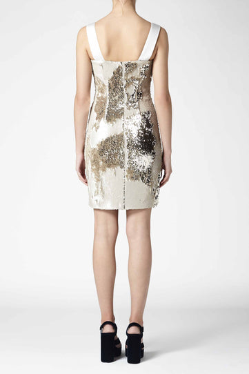 Salar Mini Dress - Nude & Gold