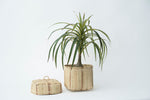 Bidayuh Lidded Storage Basket | All Natural