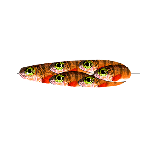 Orange Perch Trolling Spoon