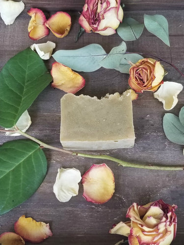 Avocado Botanical Coconut Milk Soap