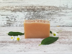 Rosemary + Mint Babassu Shampoo Bar