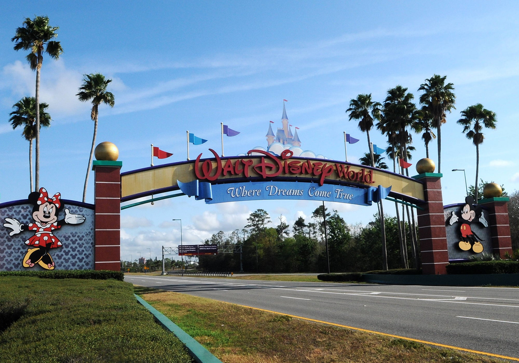 The Florida Department of Business and Professional Regulation Approves Disney World's Reopening Proposal