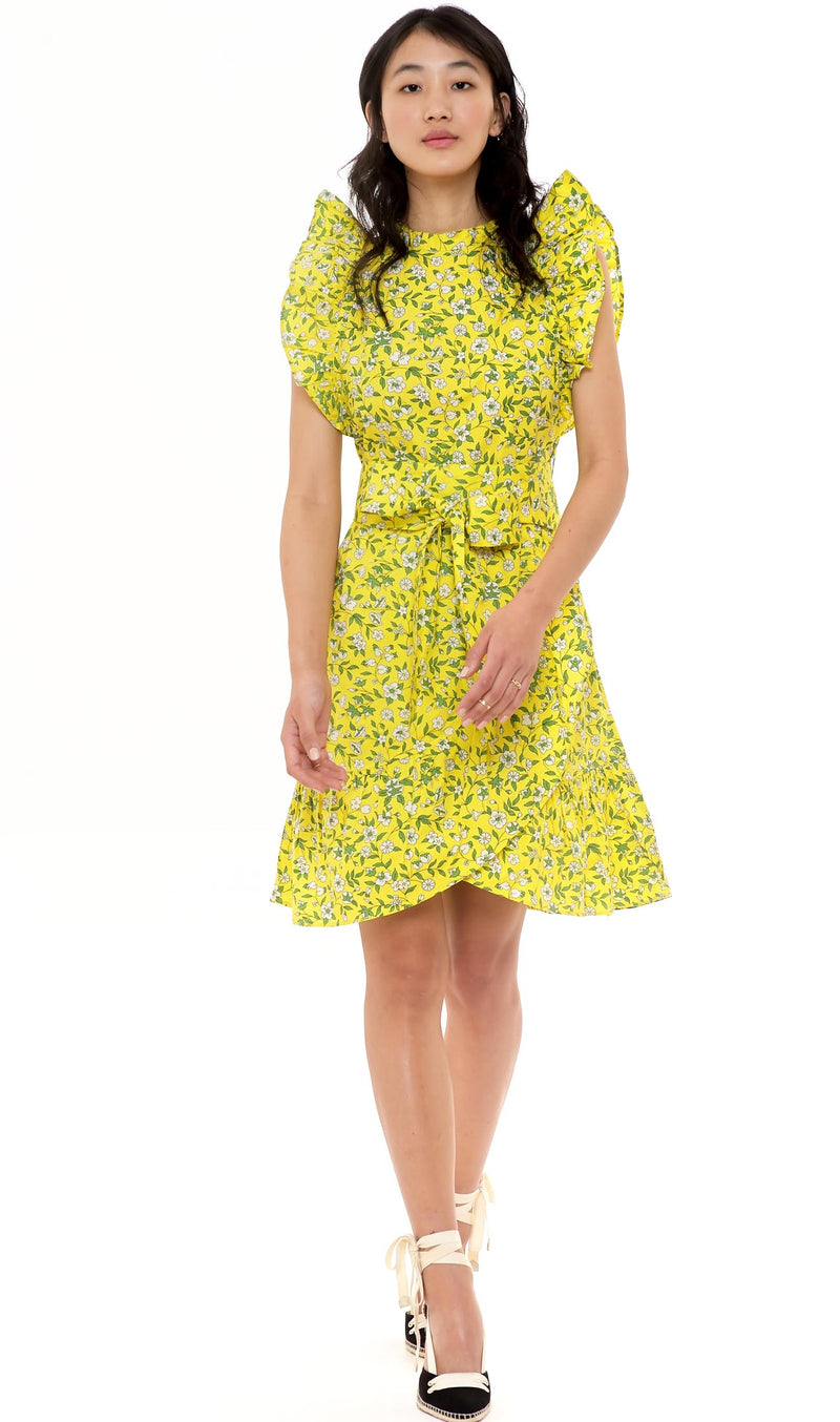 Audrey Mini Dress Cottage Garden