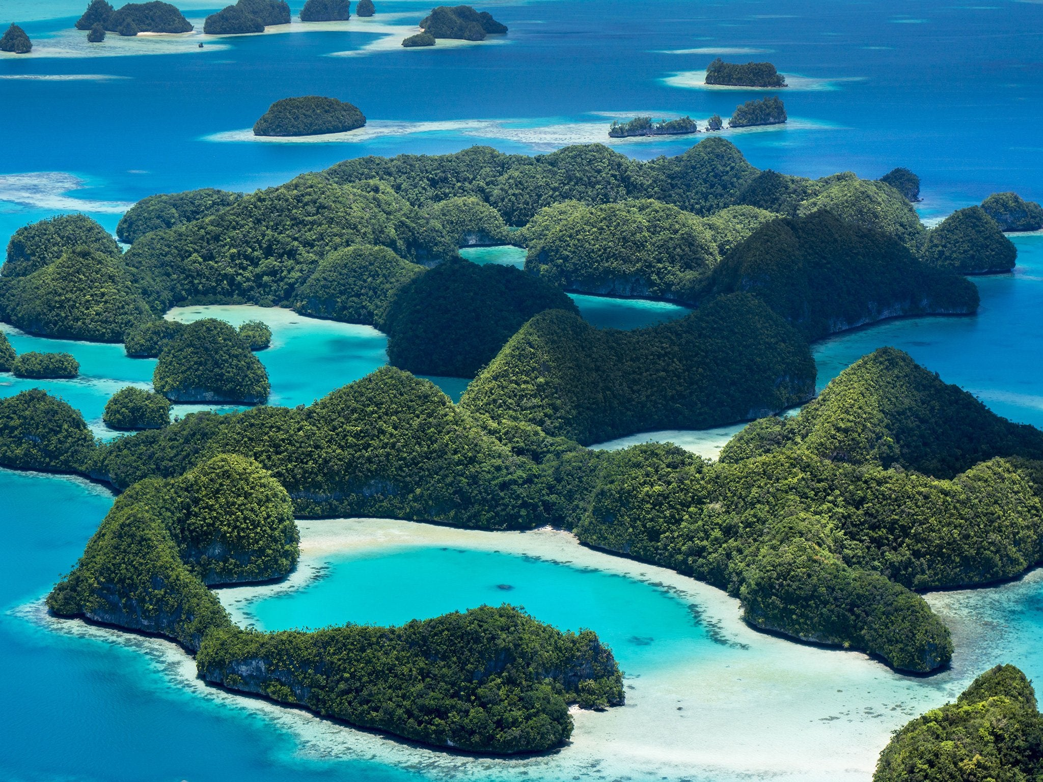 Palau steps up! The first country to ban chemical sunscreens toxic to Coral Reefs
