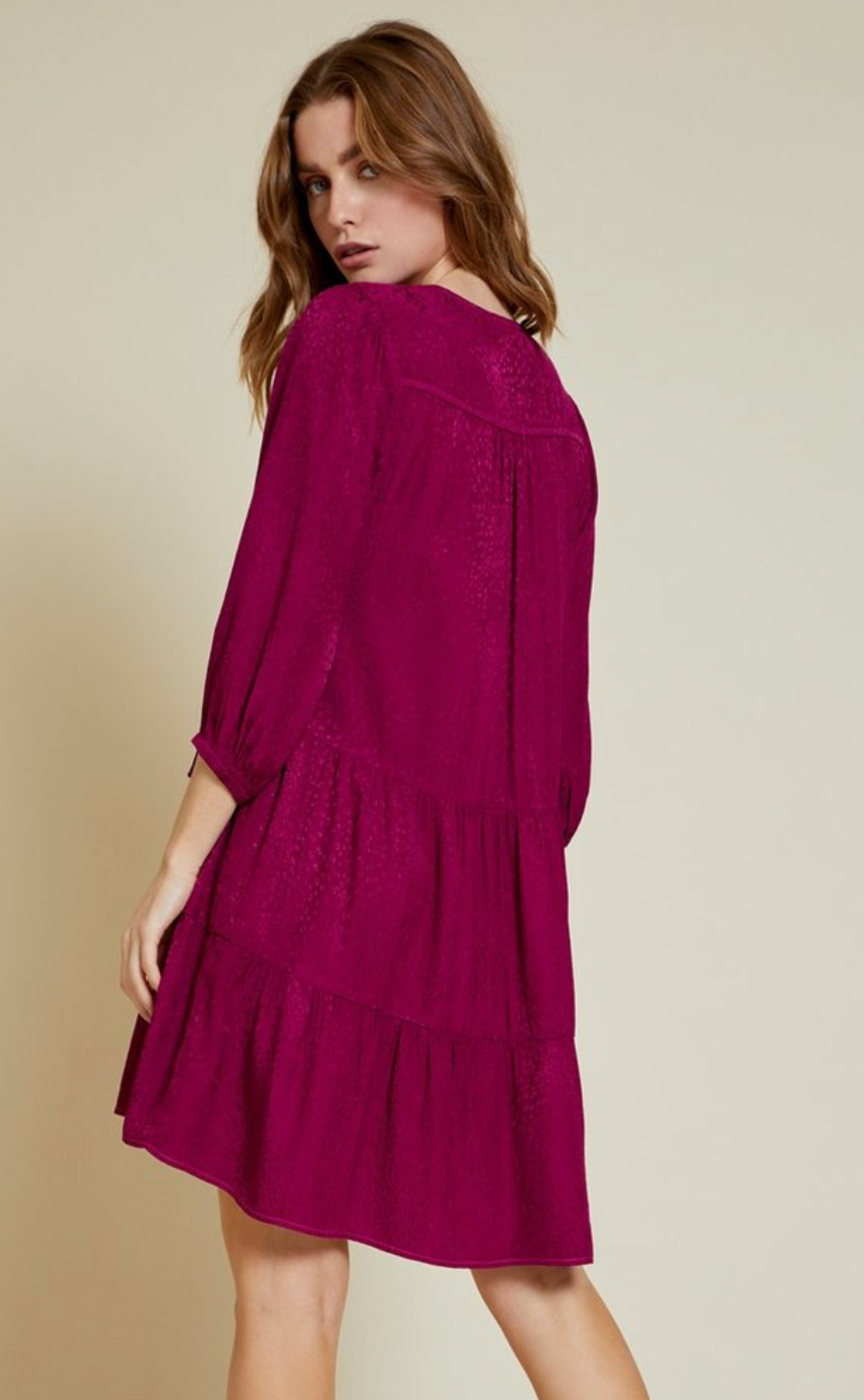 Nation Liza Dress in Berry | 4sisters1closet