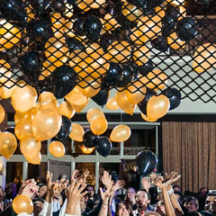 Balloon Drop Nets