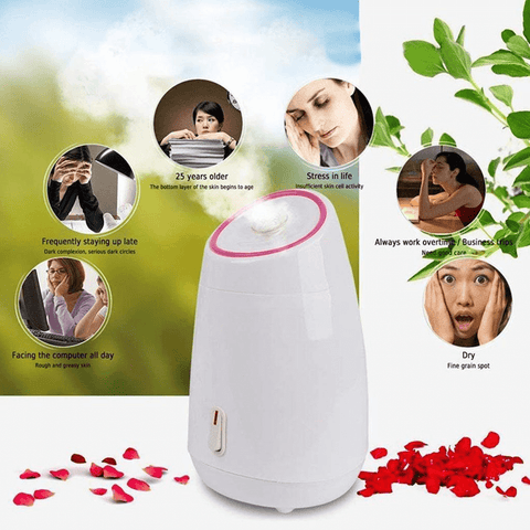 Best Fruit Nano Mist Facial Steamer