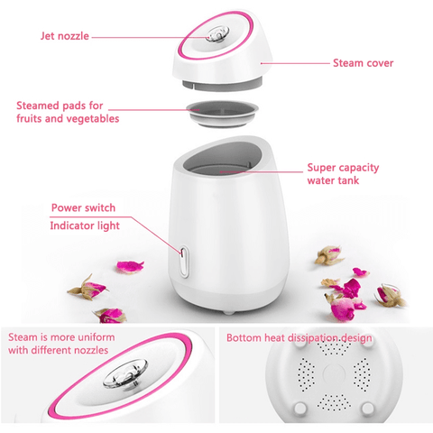 Fruit Nano Mist Facial Steamer Reviews