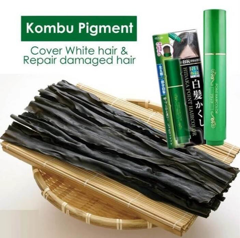 Japanese Natural Herb White Hair Cover Pen