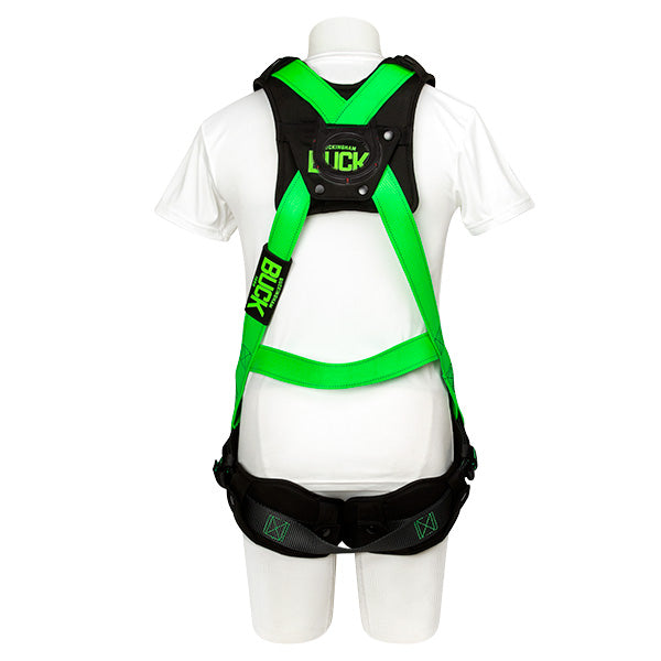 Buckingham NEW BuckOhm™ H-Style Harness with All lectric Hardware