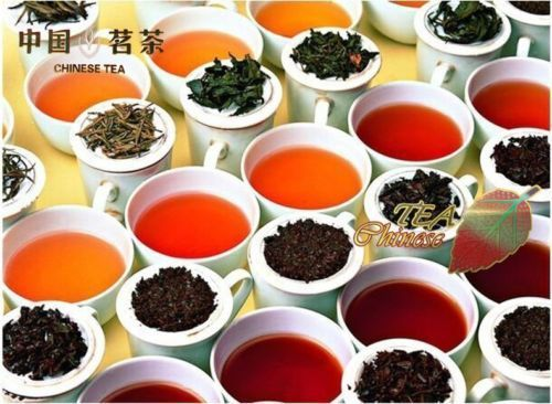 Top Grade 10 Pcs Puerh Tea Chinese Raw and Cooked Pu-erh Tuocha Slimming Mini tea