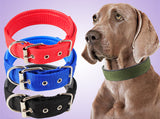 Nylon Pet Dog Collar Durable Adjustable Soft Nylon Pet Puppy Cat Dog Collar with Buckle Dog Leash Training Lead Strap Collar