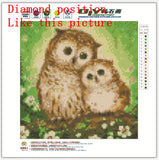 DIY 5D Partial Diamond Embroidery owl Diamond Painting Cross Stitch Kits Diamond Mosaic Home Decoration