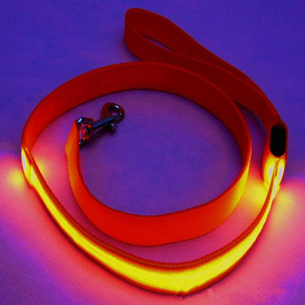 CW007 Nylon Pet 120cm LED Dog Leash Night Safety Flashing Glow LED Pet Supplies Cat Dogs Drawing Small Leads for LED Dog Collar