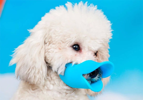 CW003 Novelty silicone cute duck mouth design dog mask muzzle Bark bite stop anti-bite mask For Pet dog