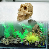 Simulation Statue Landscape Ornament Reptile Cave Artifical Rhino Sheepshead Resin Skull Aquarium Terrarium Decoration Fish Tank