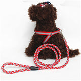 Night safety Strong Reflective Dog Leash Collar Pet Leads Belt Adjustable Traction Rope Walking Fluorescence Harness Chest Strap