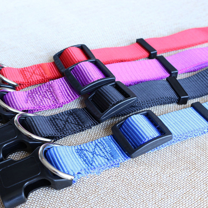 CW019 New Fashion Nylon dog collars for small dogs Pet Cat Collar 4 Sizes 4 colors adjustable dog collar nylon wholesale