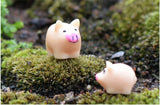 XBJ097 Mini 5pcs Pig mother and piggy decoration supplies moss micro landscape deco  Garden deco Creative handicrafts