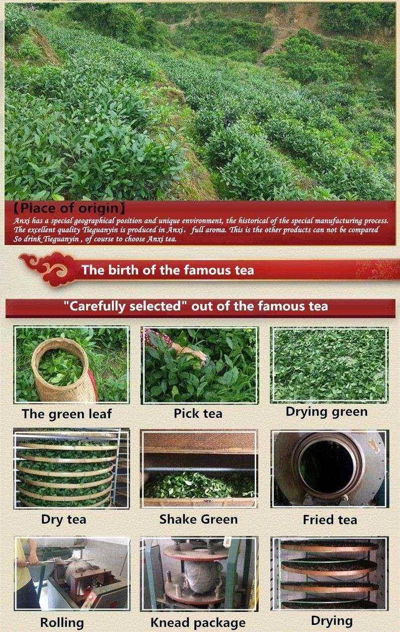 10 bags Iron Cans Gift Packing TiKuanYin Green Tea Tie Guan Yin Tea ANXI Oolong Tea