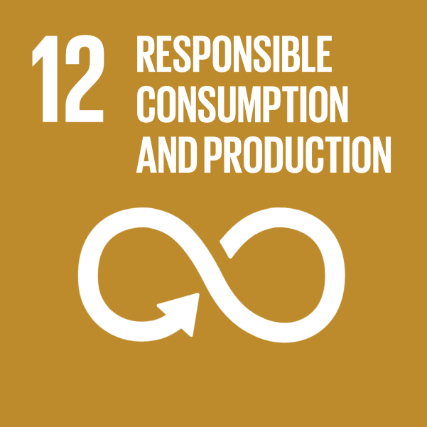 Sustainable Development Goal 12 Responsible consumption and production