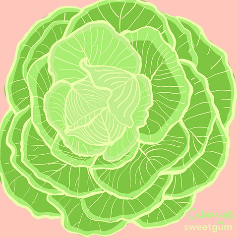 cabbage drawing by Sandra Venus for Sweetgum Home