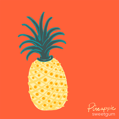 drawing of pineapple by Sandra Venus for Sweetgum Home