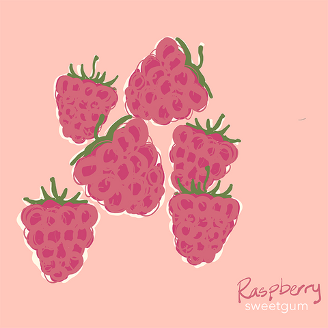 drawing of raspberries by Sandra Venus