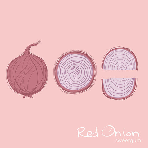 illustration of red onion