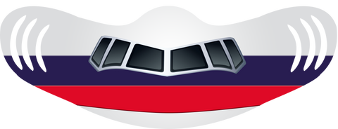 Old Delta Livery Airplane Face Mask