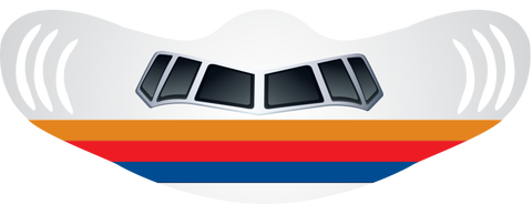 Old UA Tulip Livery Airplane Face Mask